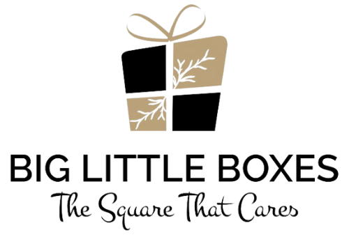 Big Little Boxes