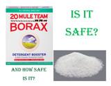 Is Borax Safe??
