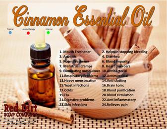 Cinnamon essential oil—Red Dirt Soap Company