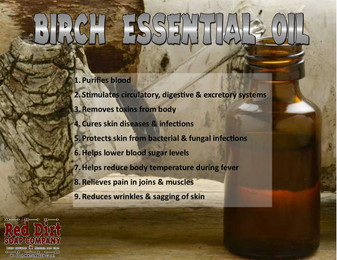 Birch Essential Oil - Red Dirt Soap Company