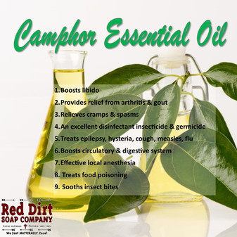 Camphor Essential Oil - Red Dirt Soap Company