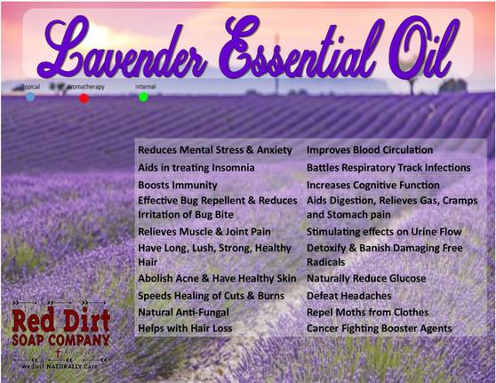 Bulgarian Lavender, French Lavender, Lavender Essential Oil,  Healing Lavender, Natural Lavender