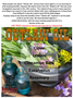 theives oil, clove essential oil, lemon essential oil, cinnamon essential oil, eucalyptus essential oil, rosemary essential oils, natural healing, reddirtsoap