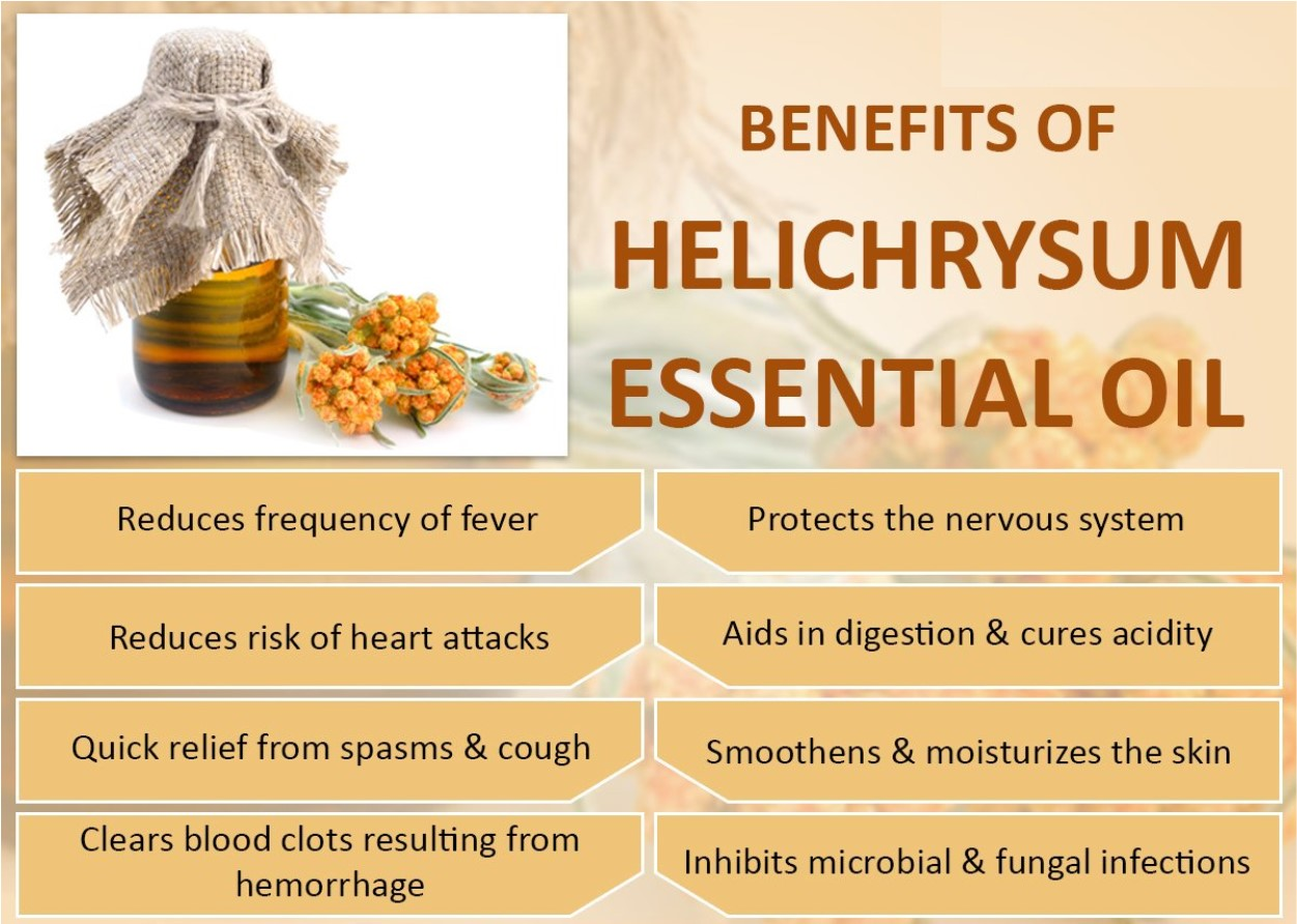 Helichrysum Essential Oil Red Dirt Soap Company
