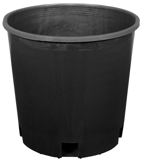 Plastic Pot (2 Gallon)