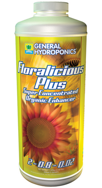 Floralicious Plus Quart