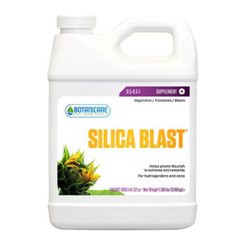 Silica Blast (Quart)