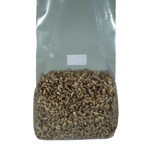 1lb Sterilized Rye Substrate Bag