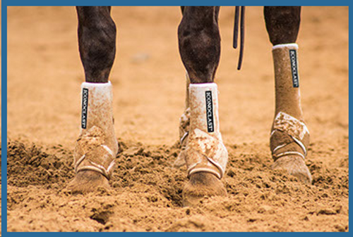 THE ICONOCLAST®  DIFFERENCE  The Iconoclast® Orthopedic Support Boot has absolutely REVOLUTIONIZED equine leg support. Iconoclast® Boots are specifically designed to support and protect the suspensory and sesamoidial regions by providing 360-degree support of the equine leg. Never has this method of support been provided for the equine athlete through a strap on, non-restrictive device.     Our entire line of Iconoclast® Boots were designed by horse trainers and leading veterinarians who were unsatisfied with the performance of every other equine boot in the market place. The equine leg needs support and protection against the daily rigors of extreme physical activities and there has not been a boot that adequately meets both of those demands until now. THAT IS THE ICONOCLAST® DIFFERENCE!