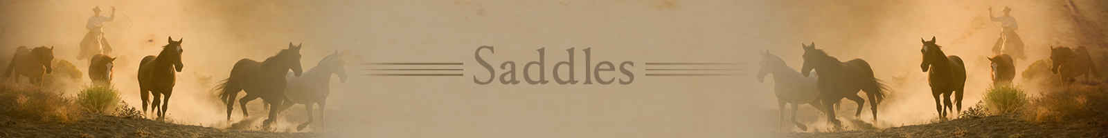 saddleshdr.png