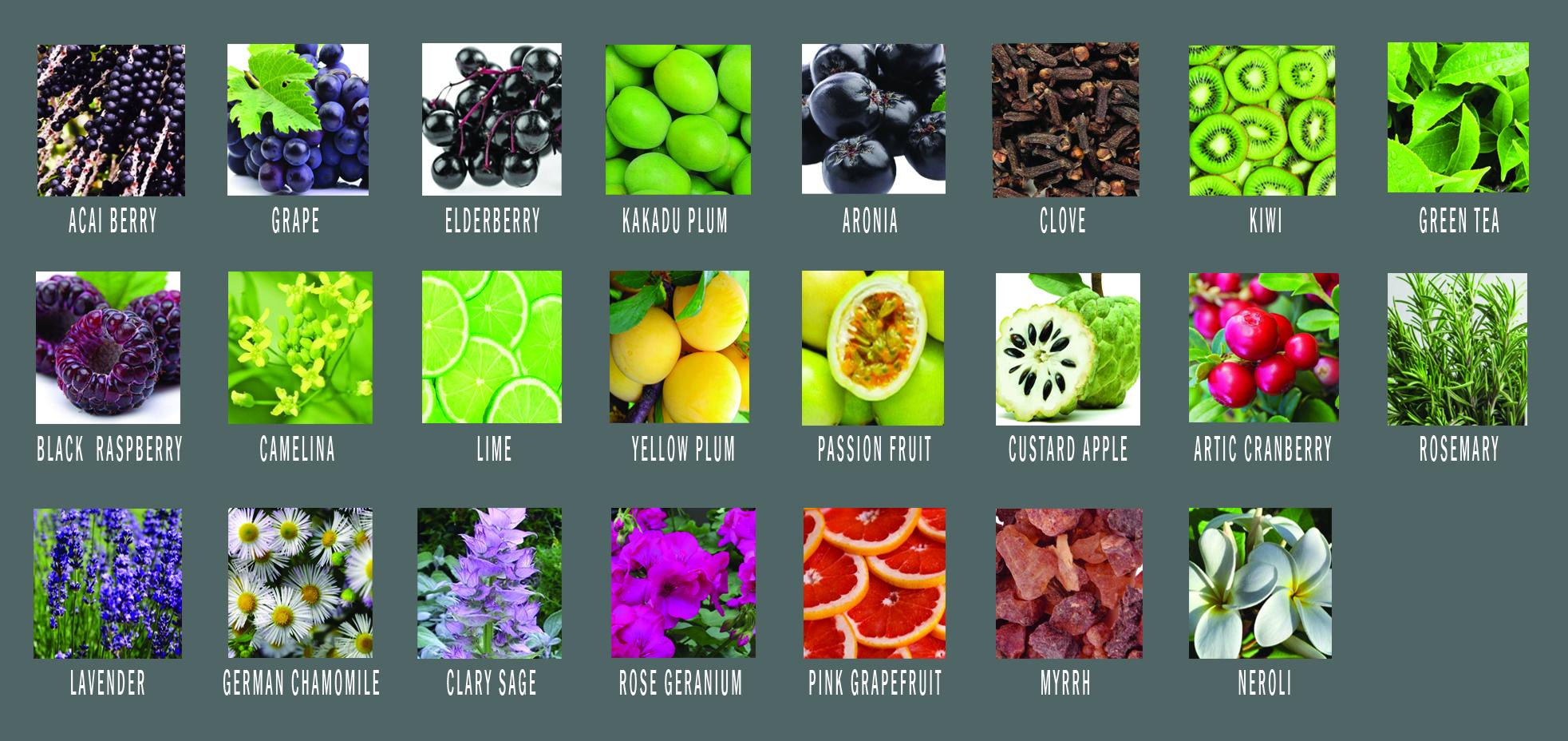 gourmet-skin-brightening-oil-ingredients-flat.jpg