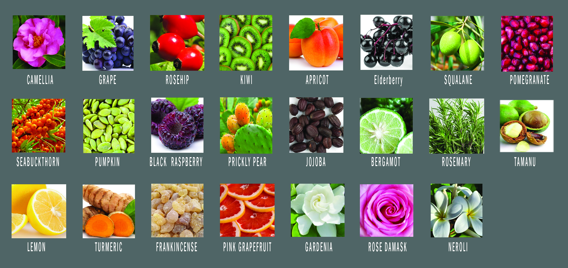 youth-oil-ingredients-copy.jpg