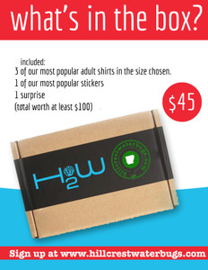 What's in the Box? | SUPER VALUE awesomeness shirts ($45)