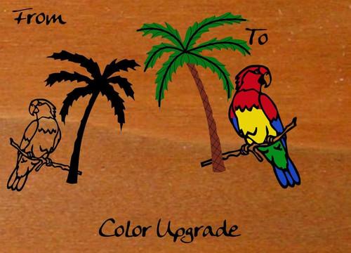 Parrot Palm Tree