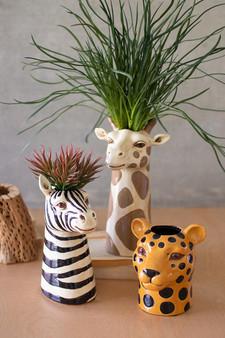 (Set Of 3) Ceramic Safari Animal Succulent Holders