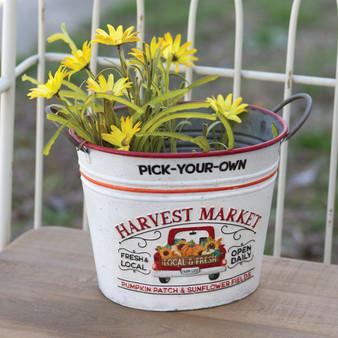 Pick-Your-Own Harvest Market Metal Bucket