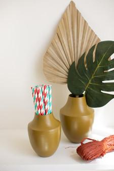 Set Of 2 Painted Metal Vases (NDE1441)