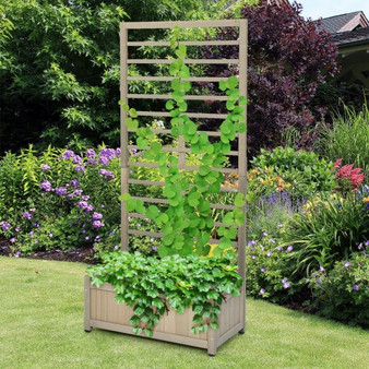 Raised Garden Bed With Trellis For Climbing Plants (GT3638)