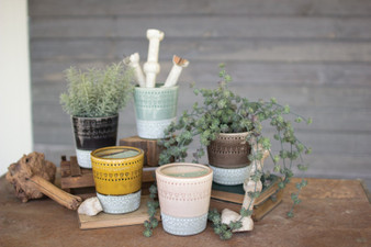 (5 Set) Ceramic Pots - One Each Color