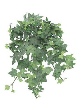 09749698 Mini English Ivy Bush13InFrosted Green 12 Pieces ZBL633-GR/FS