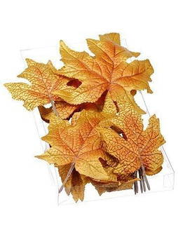 """1""""H X 5""""W X 9""""L Assorted MapleLeaf (18 Ea/Acelate Box)Brown 6 Pieces AAZ314-BR"""