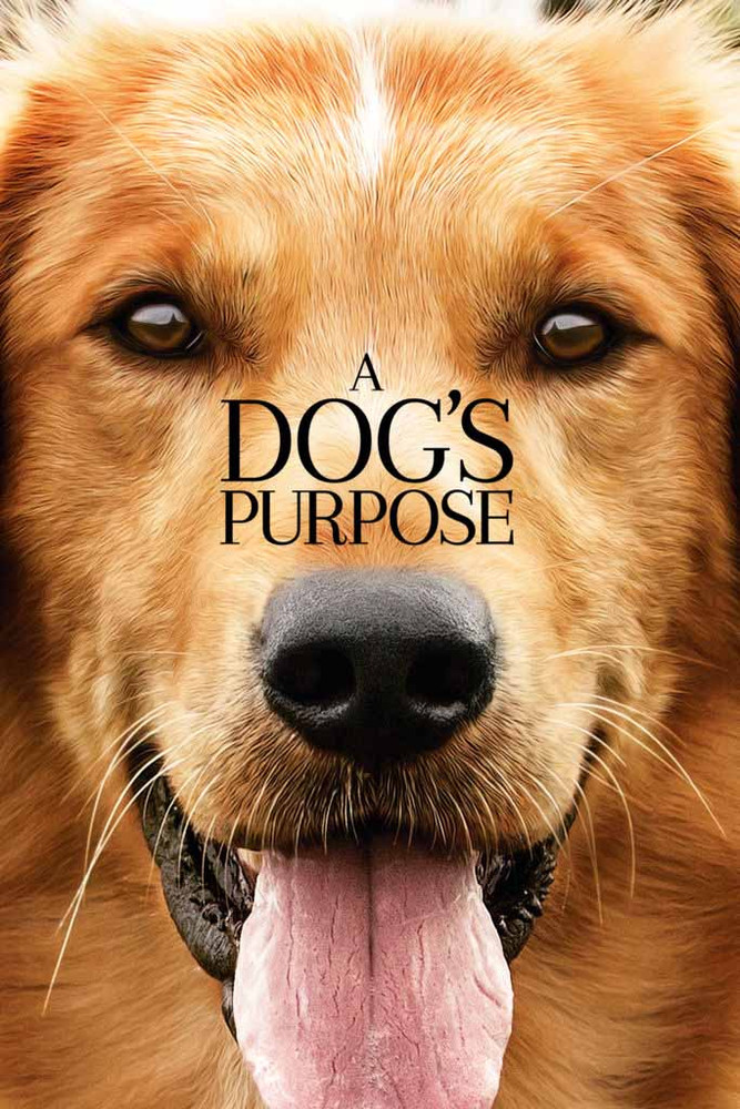 A Dog's Purpose [Vudu HD or Movies Anywhere HD  via Vudu]