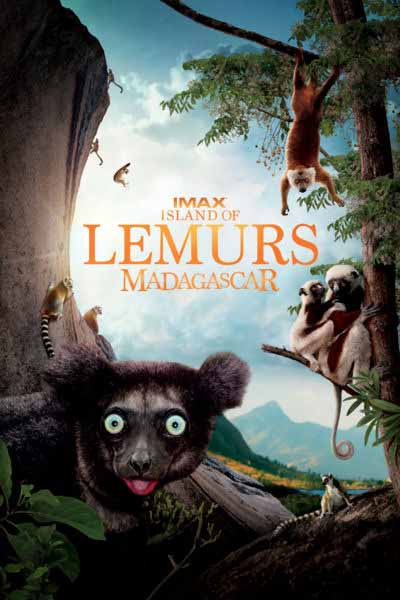 Island Of Lemurs Madagascar
