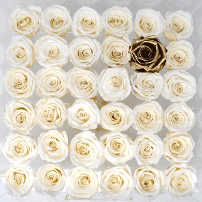 The One Eternal Rose Collection in Diamond Cut Acrylic Box