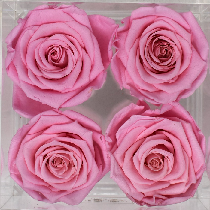 N°4 in Diamond Cut Acrylic Jewelry Box Eternal Roses