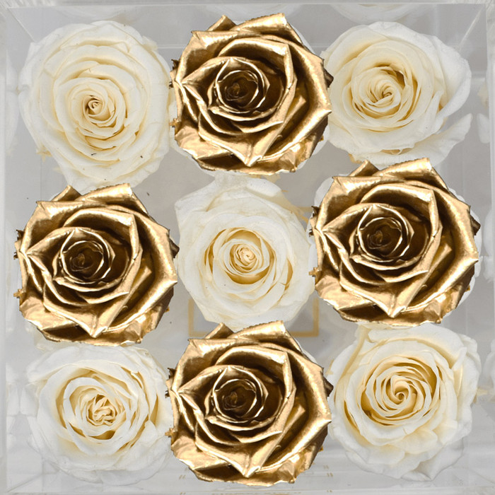 The Damiers Collection Eternal Roses