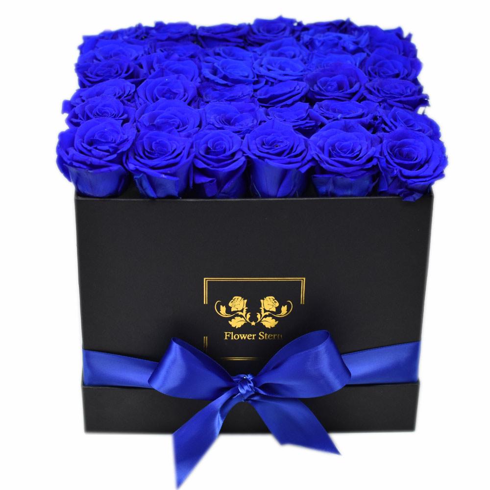 sb-r-blue-1600x.jpg