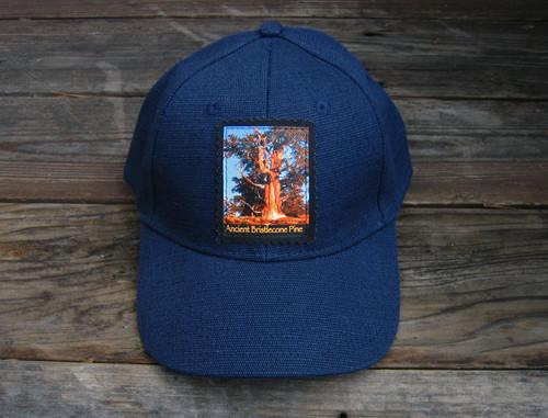 Ancient Bristlecone Pine at  Sunrise Hemp Baseball hat