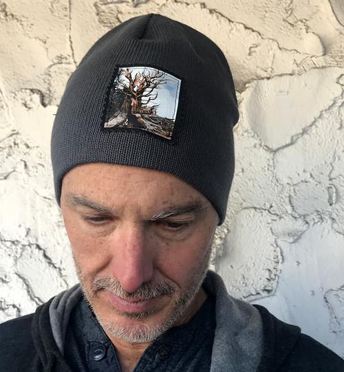 Ancient Bristlecone Pine #800 Organic Cotton Beanie Hat