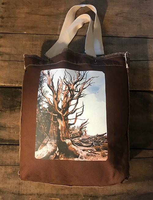Ancient Bristlecone Pine #800 Cotton Girly Tote/Purse