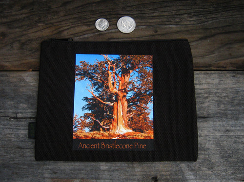 Ancient Bristlecone Pine #806 Sunrise Medium & Large Hemp Coin Purse