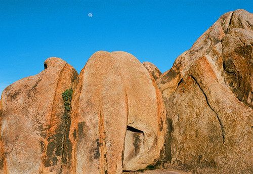 Alabama Hills #910 Greeting Card