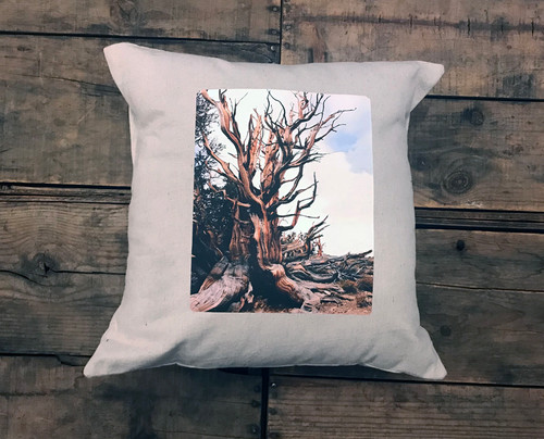 Ancient Bristlecone Pine #800 Handcrafted Pillow