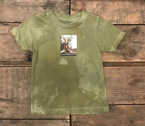 Ancient Bristlecone Pine #800 Certified Organic Cotton Kids T-Shirt