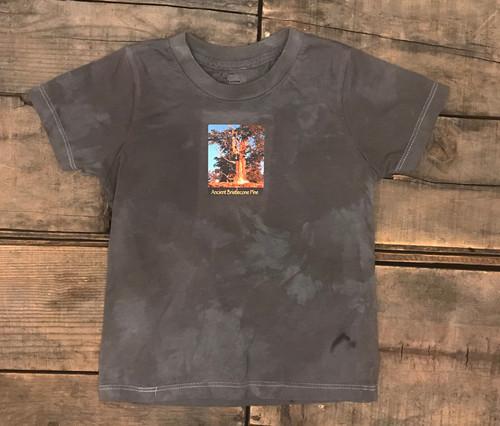 Ancient Bristlecone Pine at Sunrise #806 Certified Organic Cotton Kids T-Shirt