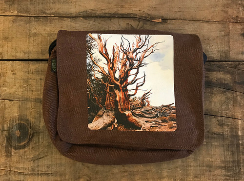 Ancient Bristlecone Pine #800 Small & Large City Slicker Hemp Purse