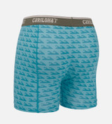 back view product shot of caribbean blue wave boxer briefs