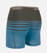 back view product shot of caribbean blue stripe boxer briefs