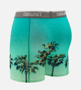 back of sky palm boxers