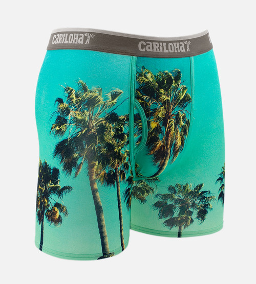 front of sky palm boxers