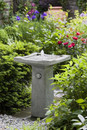 Bjorn Fountain/Birdbath by Campania International