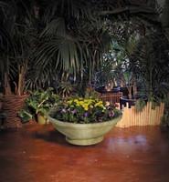 Wok Planter with Pedestal