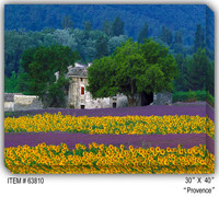 Provence Canvas Wall Art