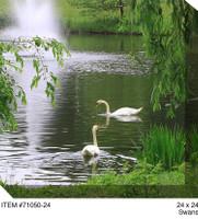Swans Canvas Wall Art