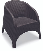 Aruba Resin Wickerlook Chair (Set of 2)