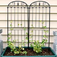 Sunnydaze 32 Inch Traditional Garden Trellis, Set of 2